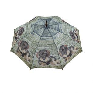 Umbrella teak dachshund laying