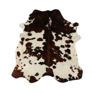 Carpet cow 3-colour (bos taurus taurus)