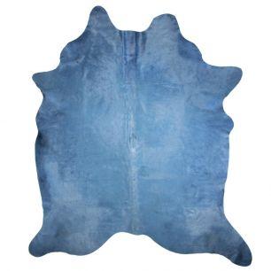 Carpet cow colour blue (bos taurus taurus)