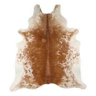 Carpet cow brown spot (bos taurus taurus)