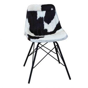Chair cow black white x (self assembly) (bos taurus taurus)