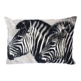 Big cushion velvet zebras grey 40x60cm