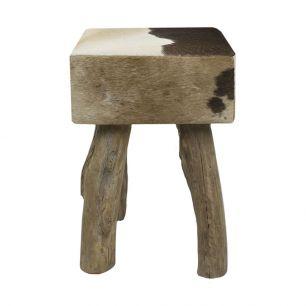 Stool cow dark brown square (bos taurus taurus)