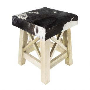Stool x cow black white square (bos taurus taurus)