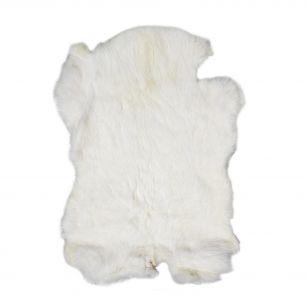 Fur rabbit white (oryctolagus cuniculus)